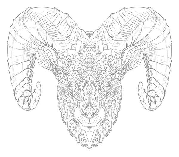 600x525 Ram Head (Tattoo Design) On Behance