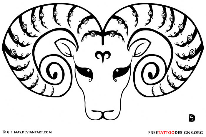 Ram Head Drawing
