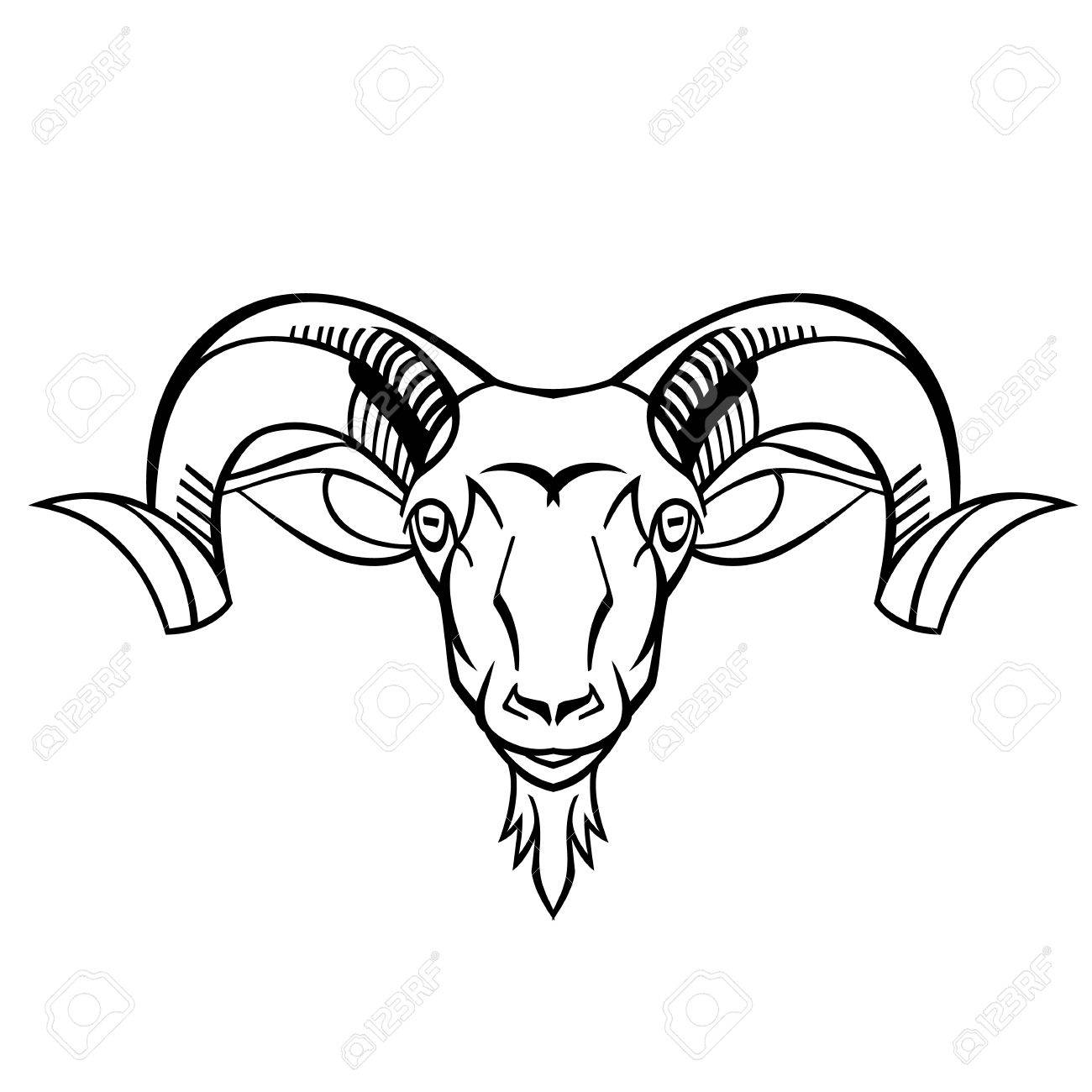 1300x1300 Ram Head Twisted Horns Mountain Dwellers Separate Head Vector