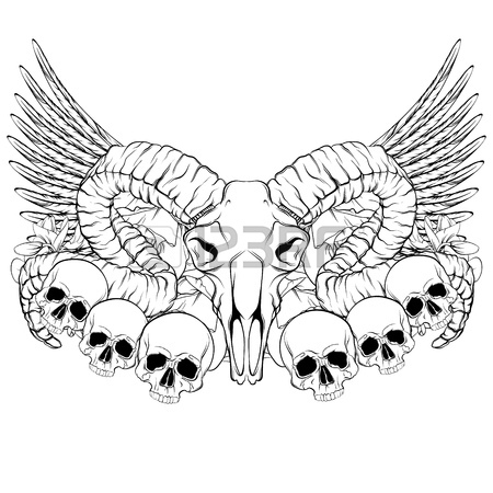 Ram Skull Drawing on deer head decal