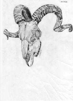 236x325 Widowed By Jeff Saunders Skull Spider Red Tattoo Canvas Fine Art