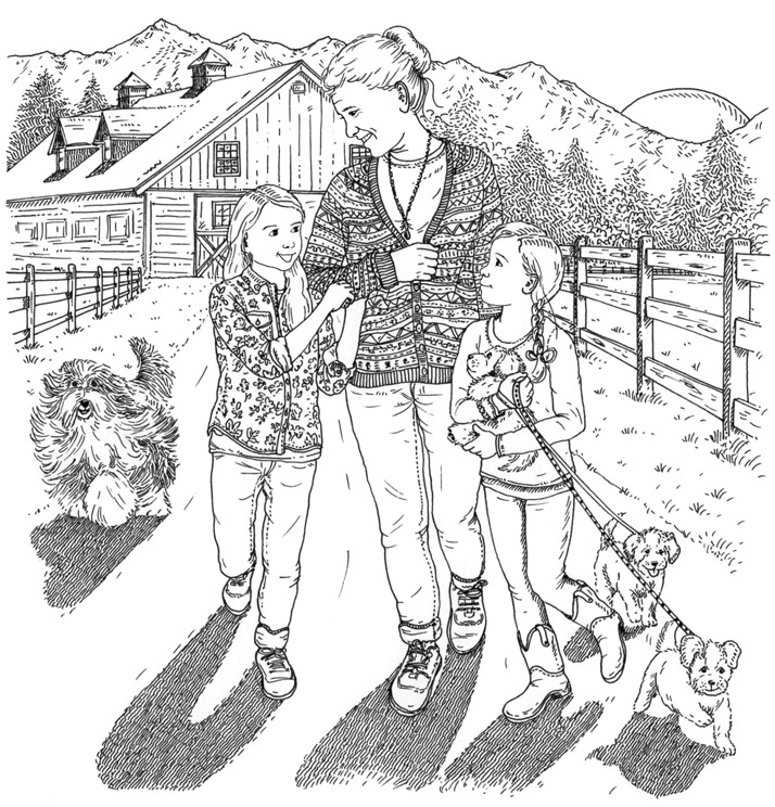 714x744 Silver Pony Ranch Book