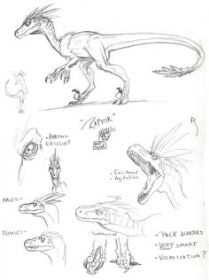 236x316 How To Draw Dinosaurs Art Tutorial Drawings