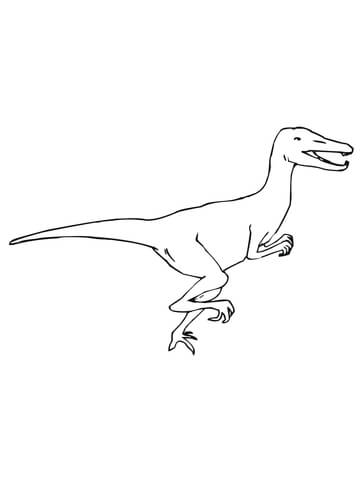 360x480 Velociraptor Dino Coloring Page Free Printable Coloring Pages