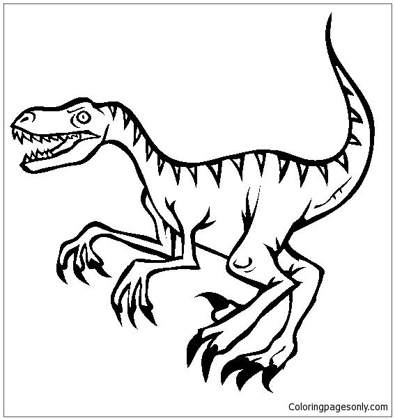 567x604 Velociraptor Dinosaur 3 Coloring Page
