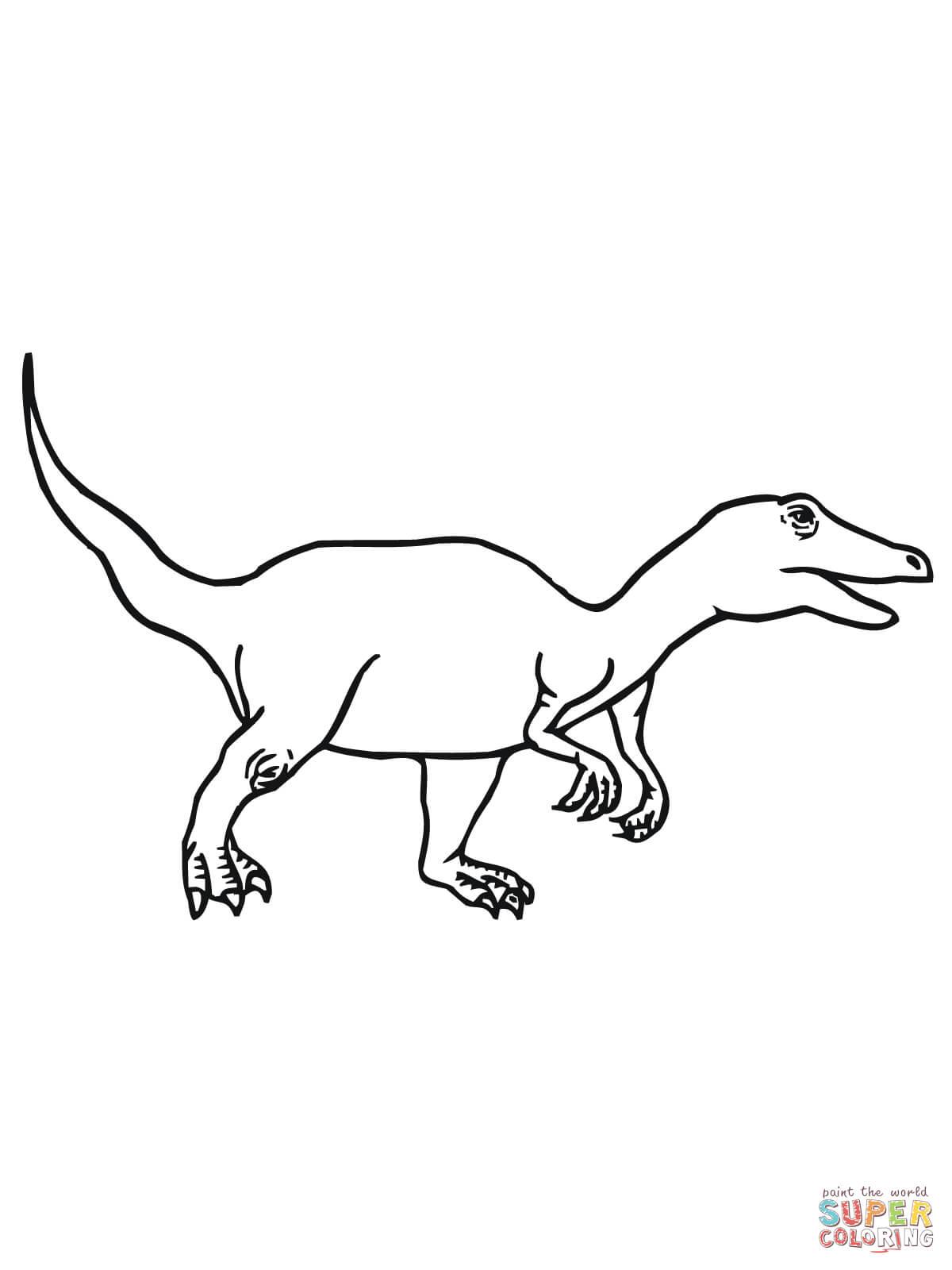 1200x1600 Velociraptor Dromaeosaurid Theropod Dinosaur Coloring Page Free