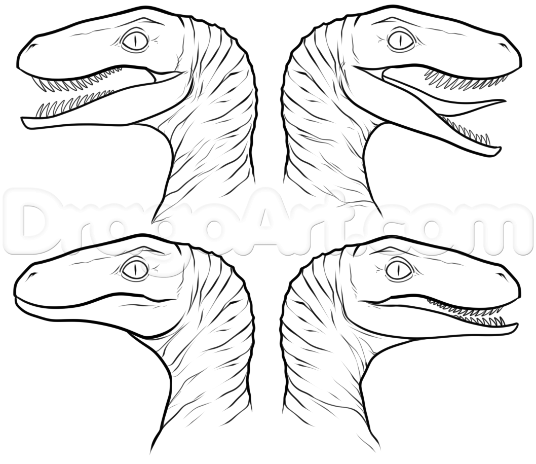 1058x915 How To Draw Raptor Squad From Jurassic World Step 6