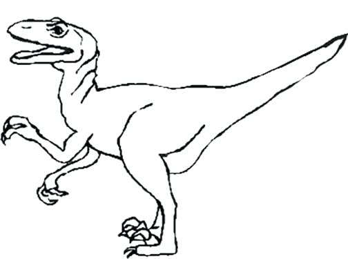 504x375 Best Jurassic World Velociraptor Coloring Pages Contemporary