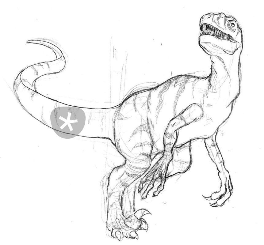 861x800 Raptor Drawing Art Prints And Posters By Patator