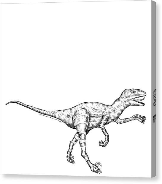 546x622 Raptor Drawing By Karl Addison