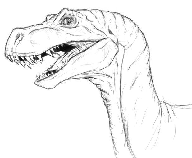 618x509 Raptor By Shimmergloom