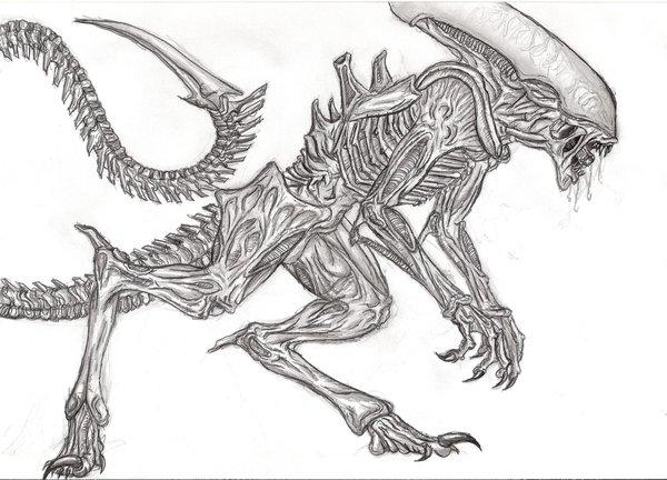 600x432 Raptor Alien Finished By Schytelizard94
