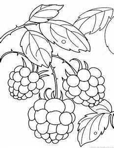 232x300 Raspberry Coloring Pages Drawing Raspberry, Bullet