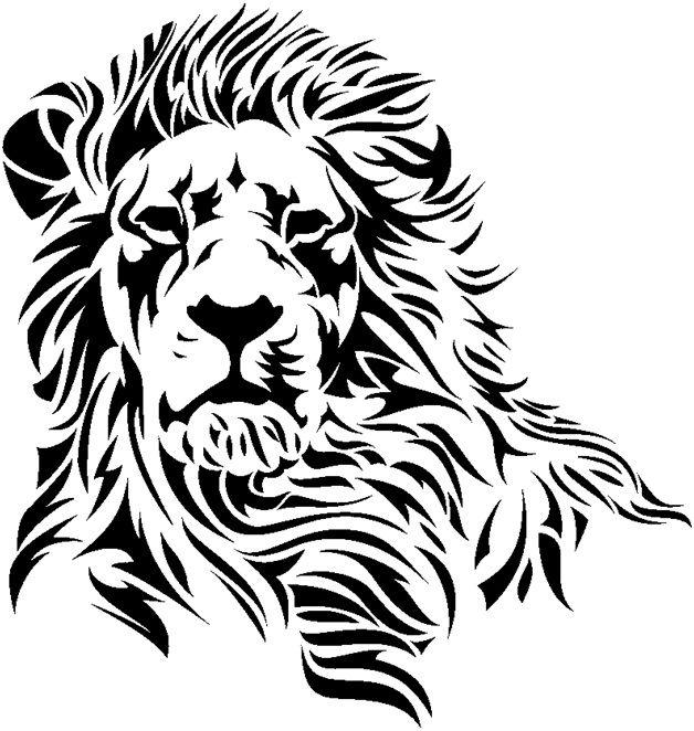 628x662 13 Best Images About Lions