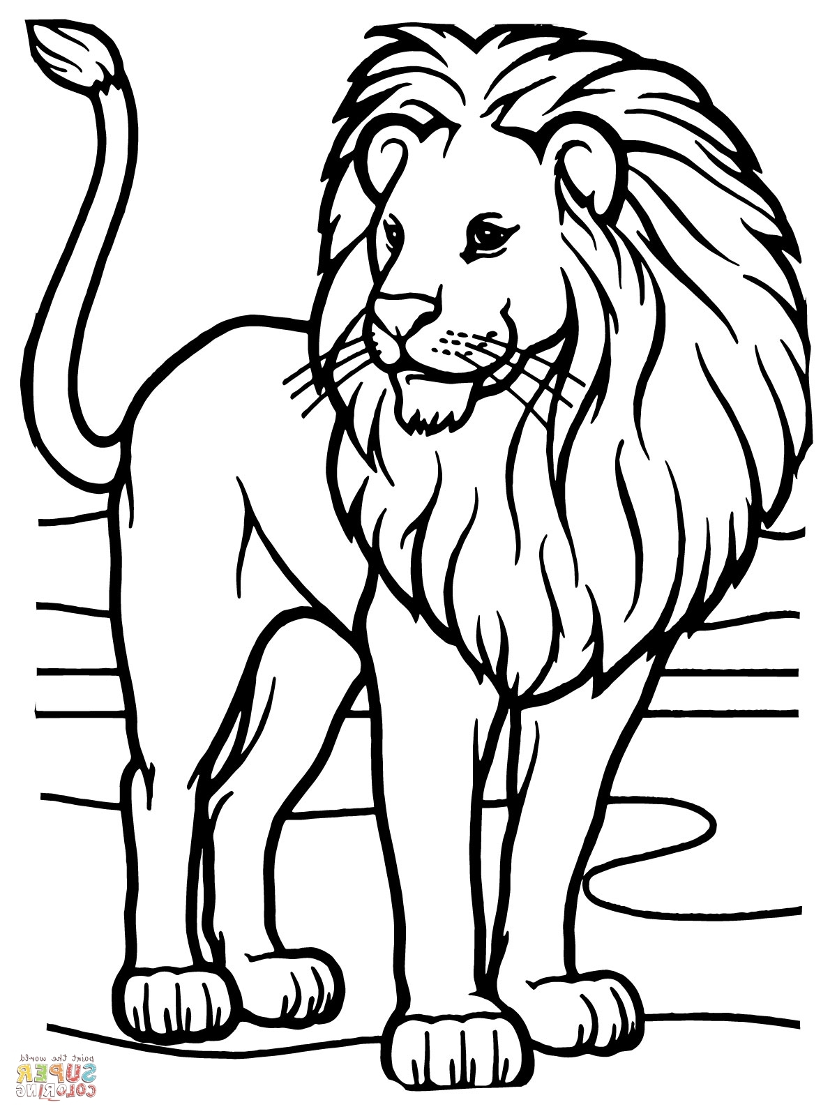 1200x1600 African Lion Coloring Page Rasta Lion Coloring Pages Coloring