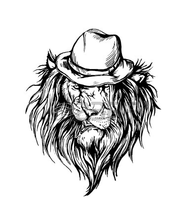 375x450 Black And White Lion Stock Photos. Royalty Free Business Images