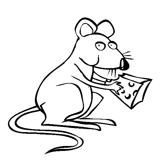 Rat Line Drawing