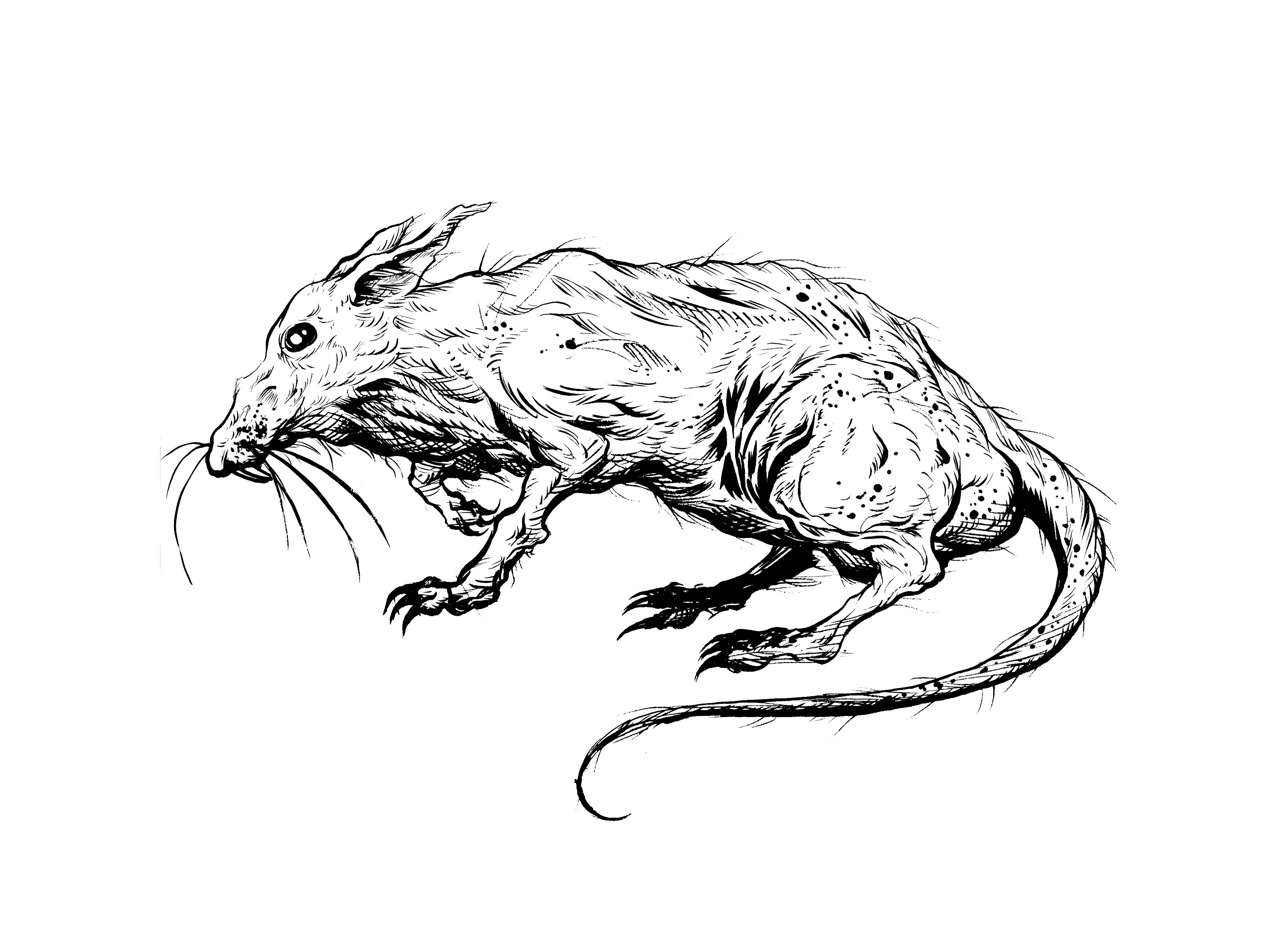 3508x2552 Naked Mole Rat Inked Piece Markloneart