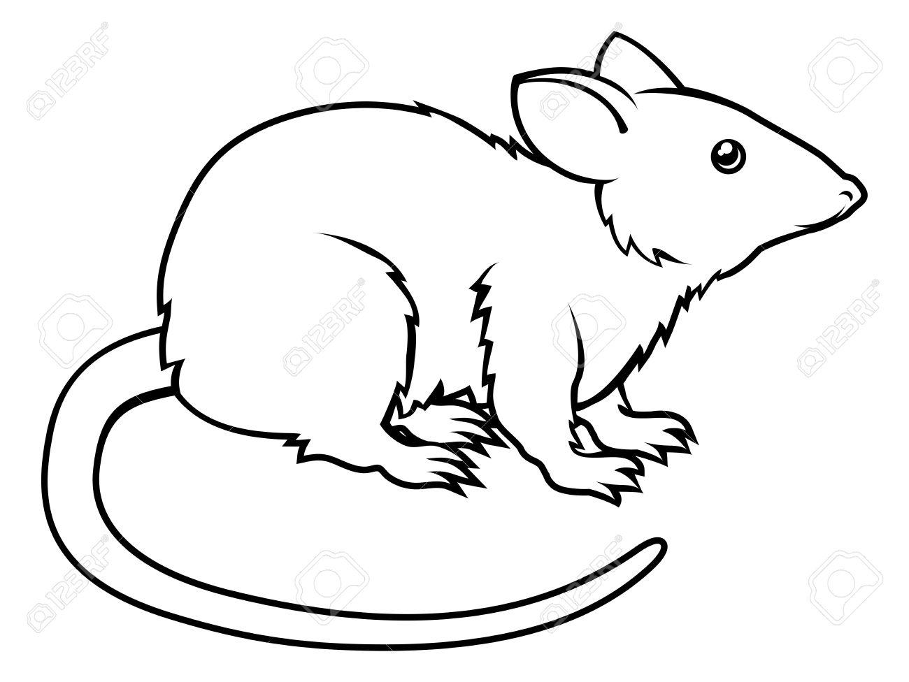 1300x976 Drawn Rat Rat Line