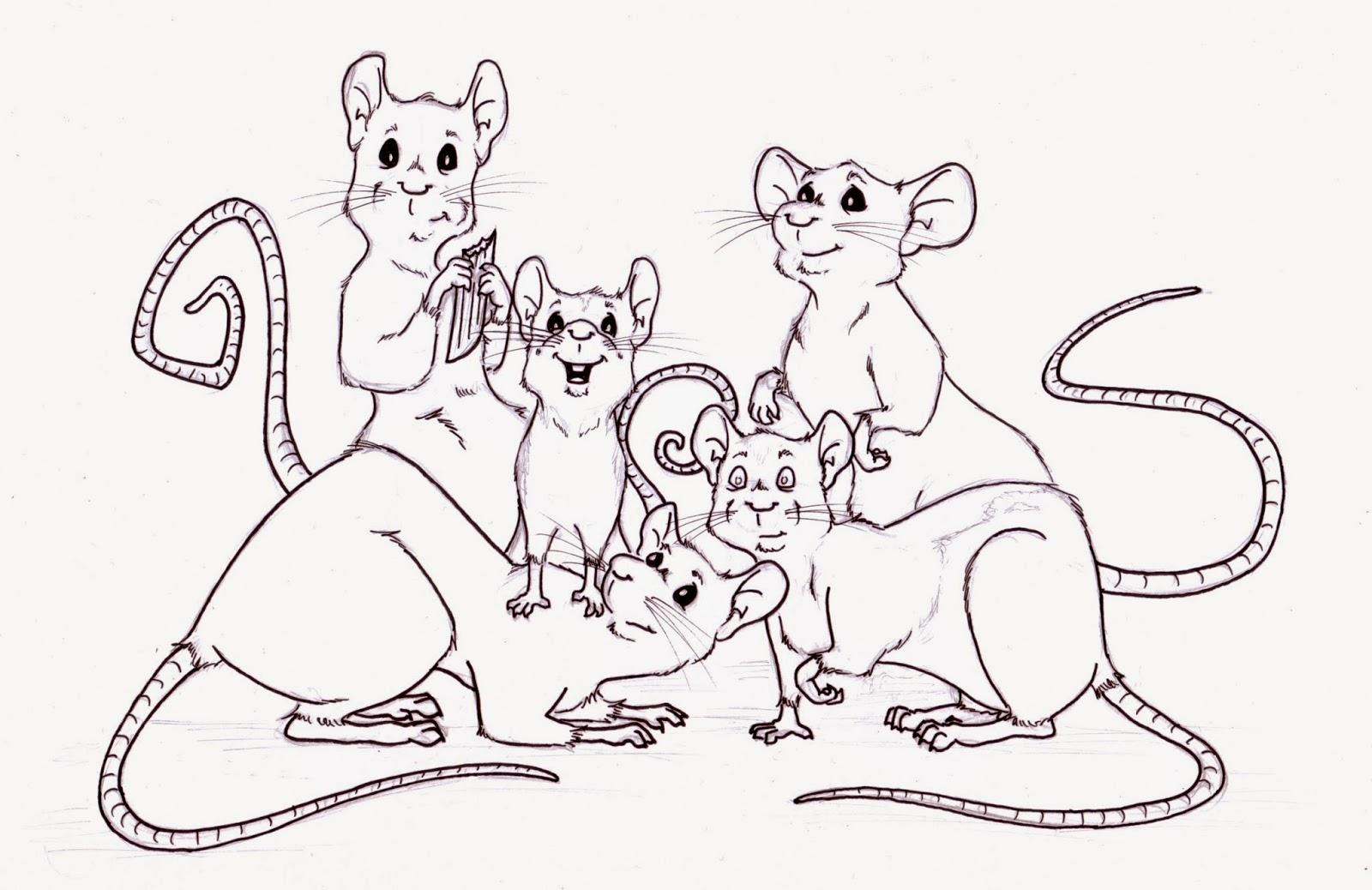 1600x1038 Sara Dunkerton Illustration And Animation Pet Portraits