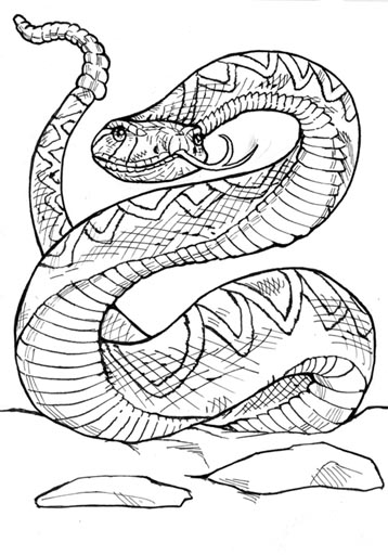 Rattle snake drawing at free for for Western diamondback rattlesnake coloring pages