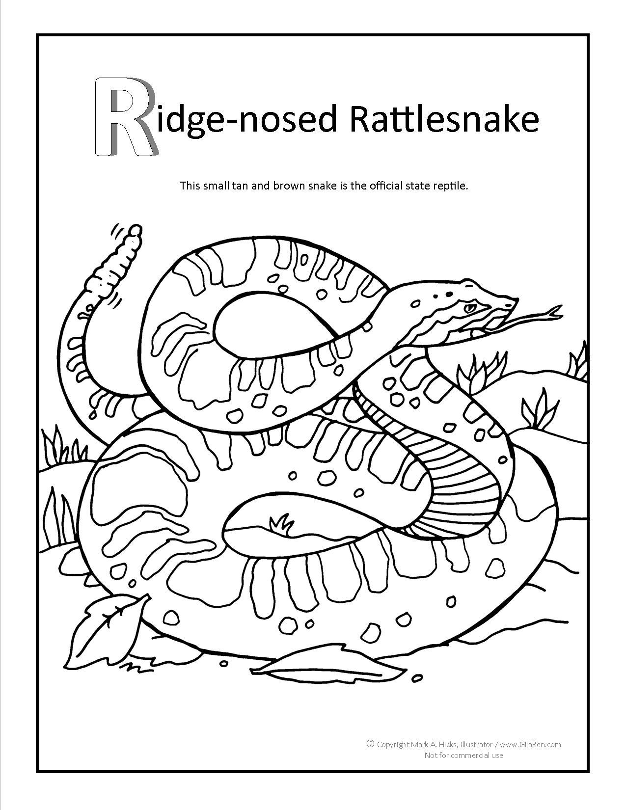 1275x1650 Ridge Nosed Rattlesnake Coloring Page