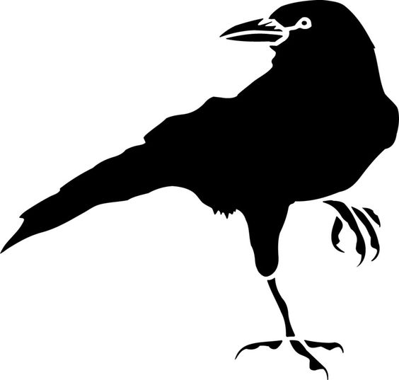 564x537 Crow Drawing Clipart