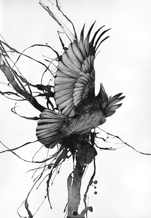 600x866 Crow Detailed Dog, Wolf Or Crow Crows