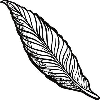341x340 Feather