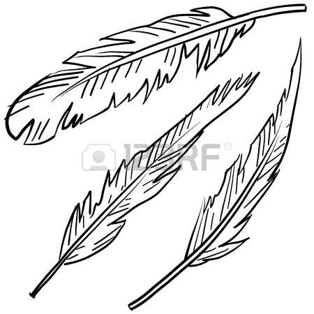 450x450 Image Result For Crow Feather Illustration Alistair