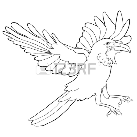 450x450 720 Raven Vector Stock Vector Illustration And Royalty Free Raven