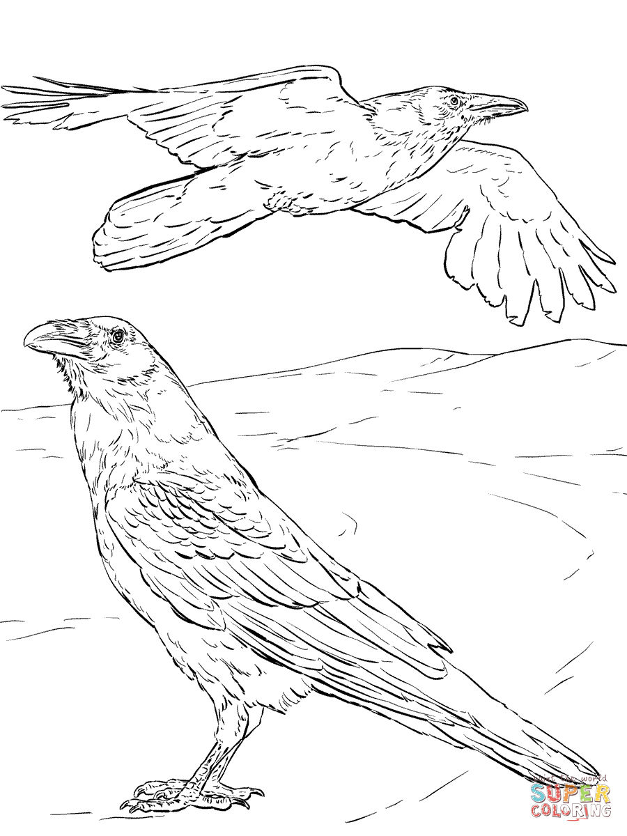 900x1200 Raven Bird Coloring Pages Demon Coloring Pages