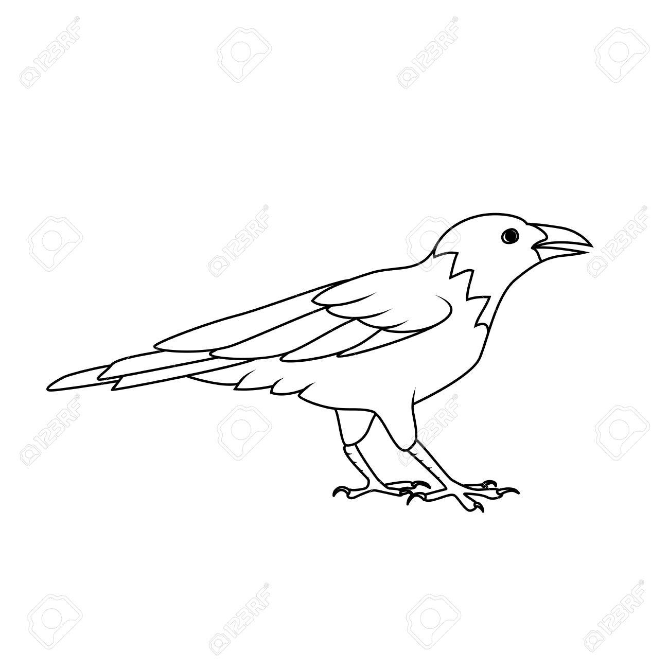 1300x1300 Coloring Book Crow Or Raven Royalty Free Cliparts, Vectors,
