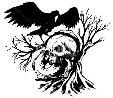 Raven Skull Drawing