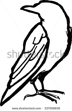 307x470 Hand Drawn Raven. Unique Rough Typography Vector Isolated