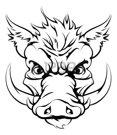 Razorback Drawing