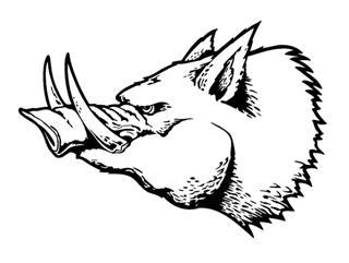 320x241 Razorback Wild Boar Decal Sticker