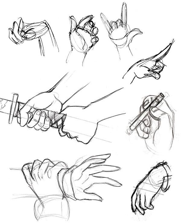 600x741 Human Anatomy Fundamentals How To Draw Hands