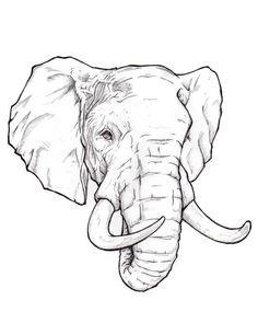 236x295 Pencil Drawings Of Baby Elephants Portrait Drawings Elephant
