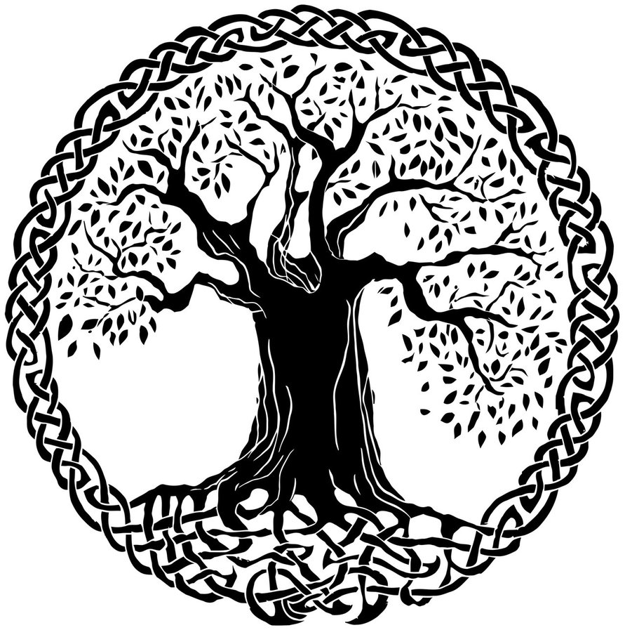 891x897 Celtic Tree Of Life Drawing This Is For Real. This Tattoo Will Be