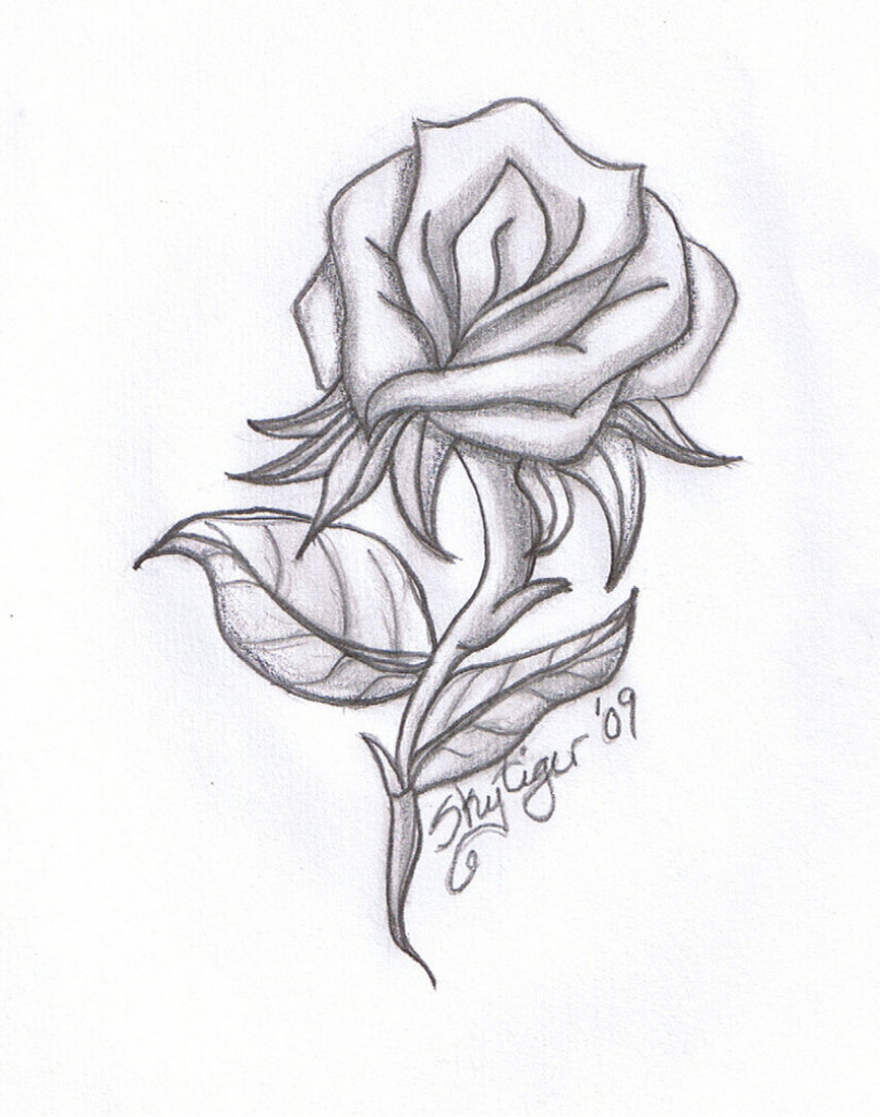 807x1024 Ideas Of Draw A Real Rose Rose Heart Tattoo Drawing Photo 4 Real