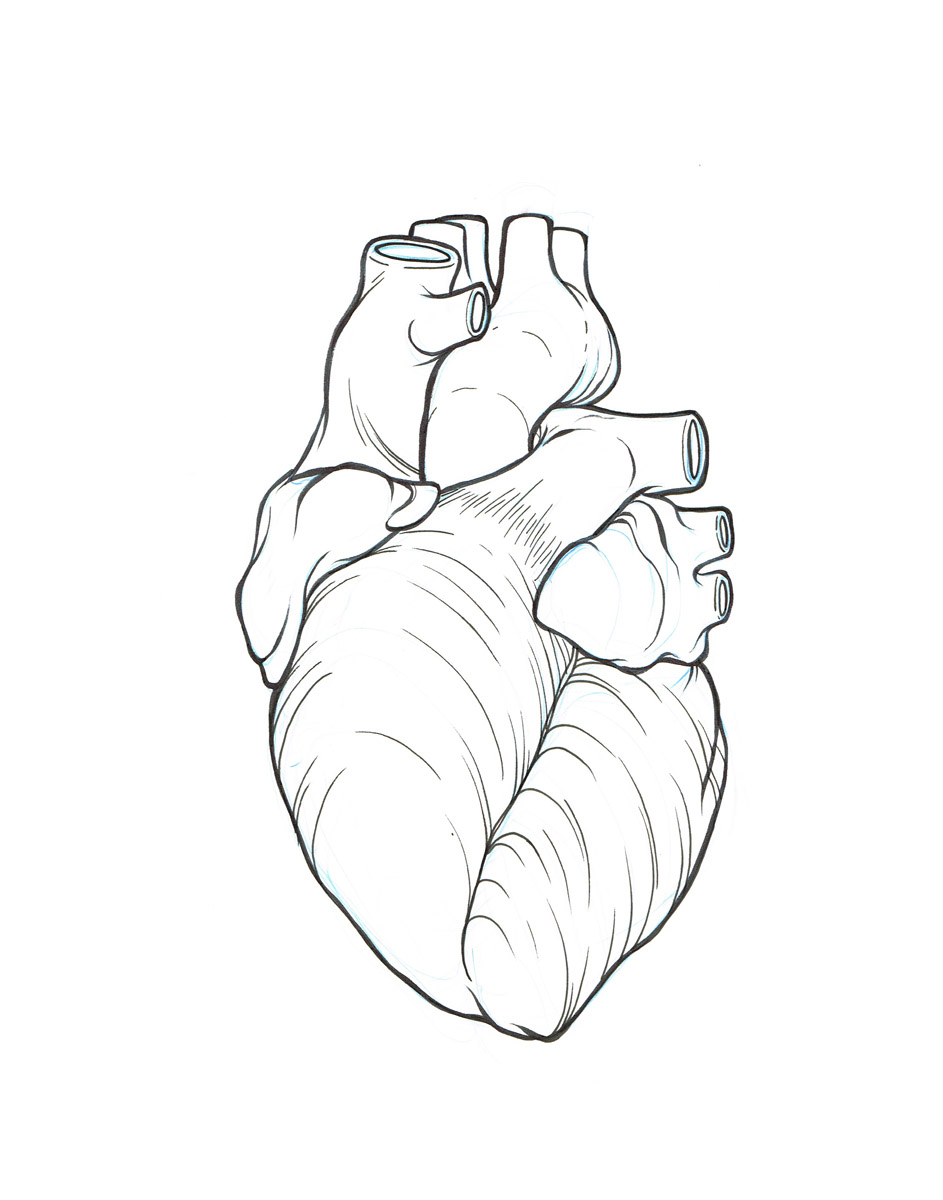 Real Heart Drawing at GetDrawings.com | Free for personal use Real ...