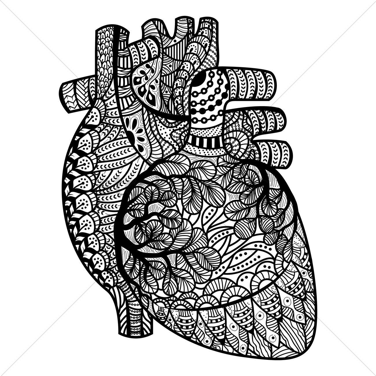 1300x1300 Intricate Human Heart Design Vector Image