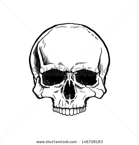 450x470 Skull Without Bottom Jaw Tattoo Skull Without A Lower Jaw. Art
