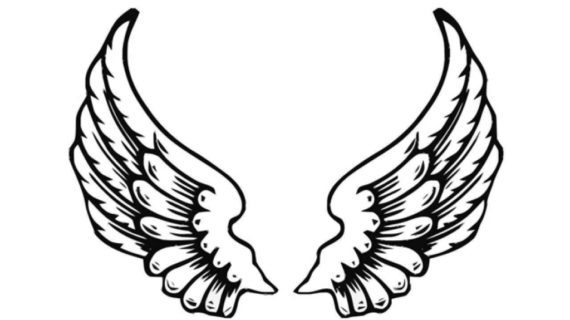 570x320 Angel Wings Sketch Realistic Angel Wings Related Keywords Amp
