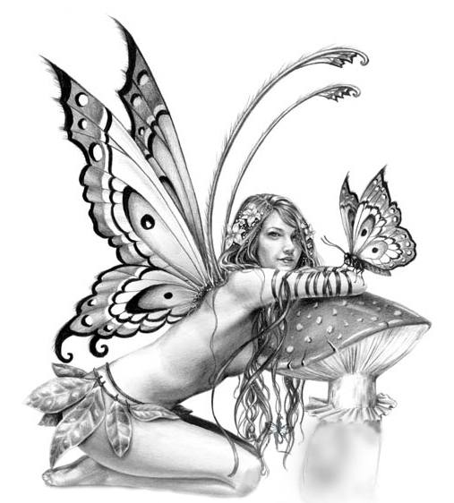 507x562 Realistic Fairy Tattoos Fairy, Tattoo And Drawings