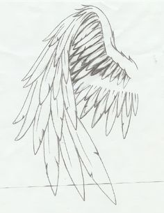 236x305 Gallery Art Drawings Angel Wings,