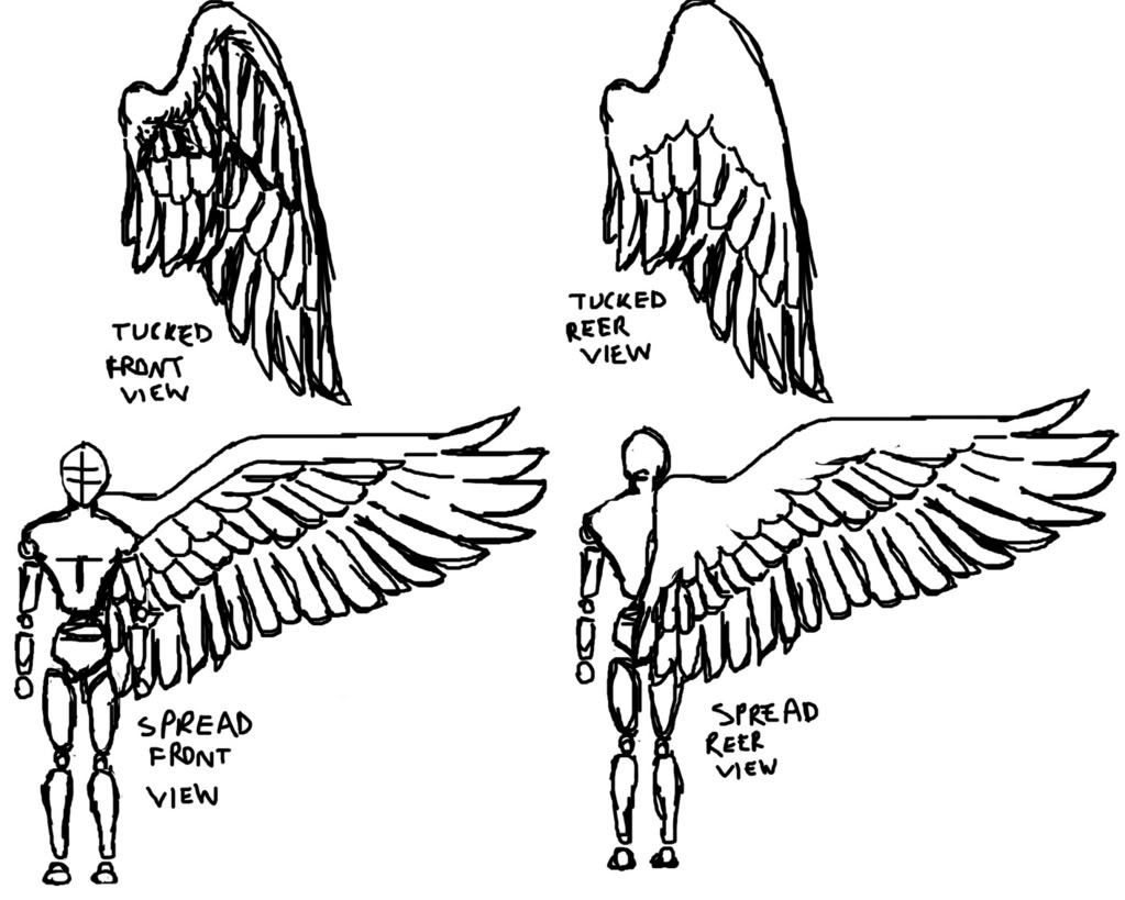 1023x819 Wings Line Drawing