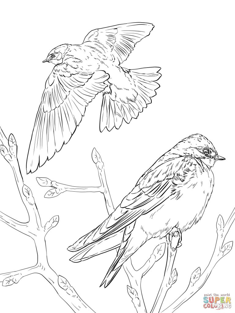 768x1024 Realistic Tree Swallows Pattern Coloring Page
