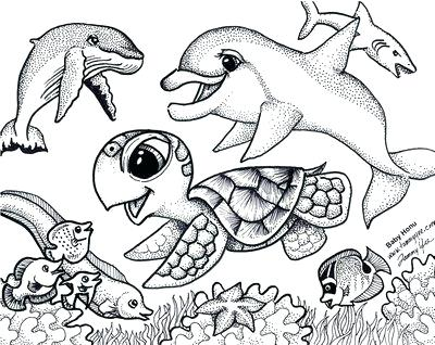 400x318 Ocean Animal Coloring Pages Coloring Pages Ocean Animal Drawings